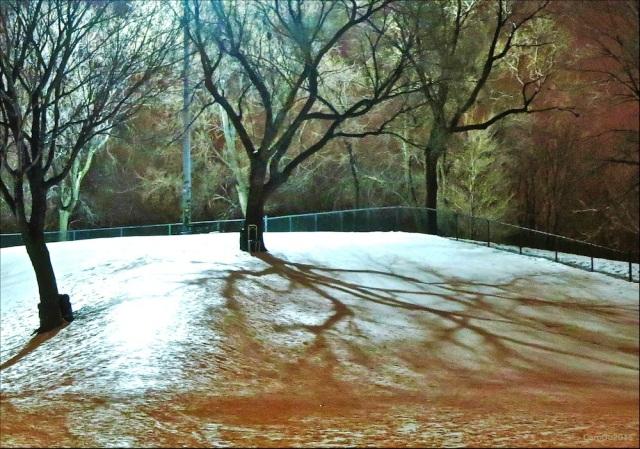 SOIR GLACÉ - Parc du Pélican, Rosemont - Janvier 2015