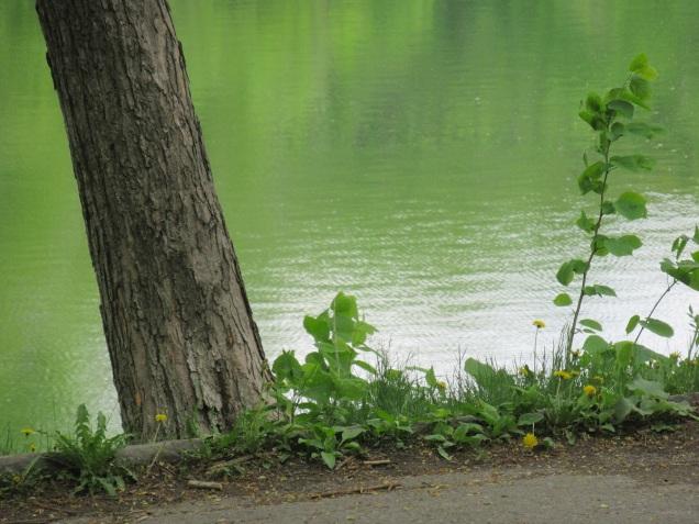 L'ARDEUR DU TEMPS (combien de verts encore)