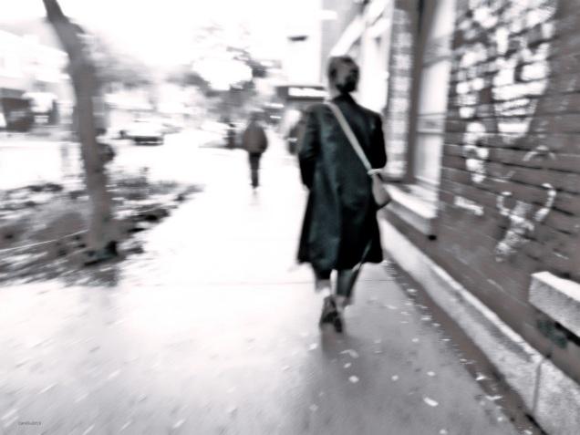 La fille au manteau de velours