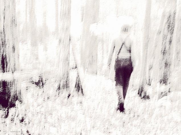 En forêt tendre