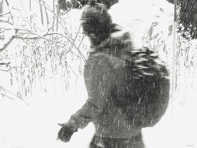 Sous la neige muse