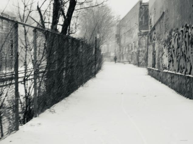 Et la neige a neigé