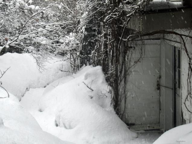 De nos matins de neige