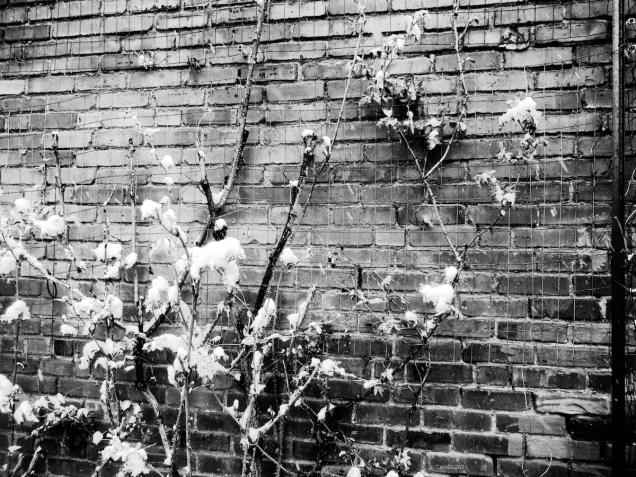 Hier, un mur